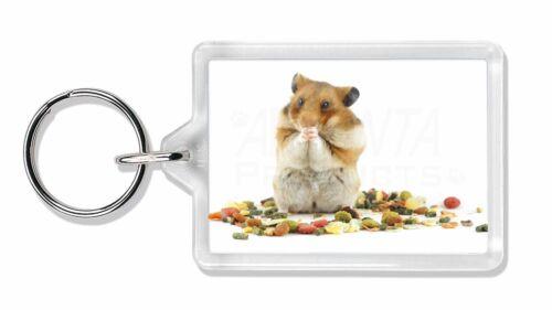 Lunch Box Hamster Photo Keyring Animal Gift HAM-1K