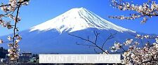 PANORAMA FRIDGE MAGNET of MOUNT FUJI JAPAN