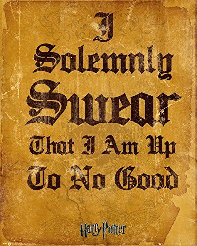 Harry Potter I Solemnly Swear Wizarding World Mini Poster Print 40x50cm 16x20 in
