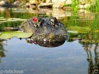 Outdoor Water Solutions Floating Alligator Airstone Marker Garden