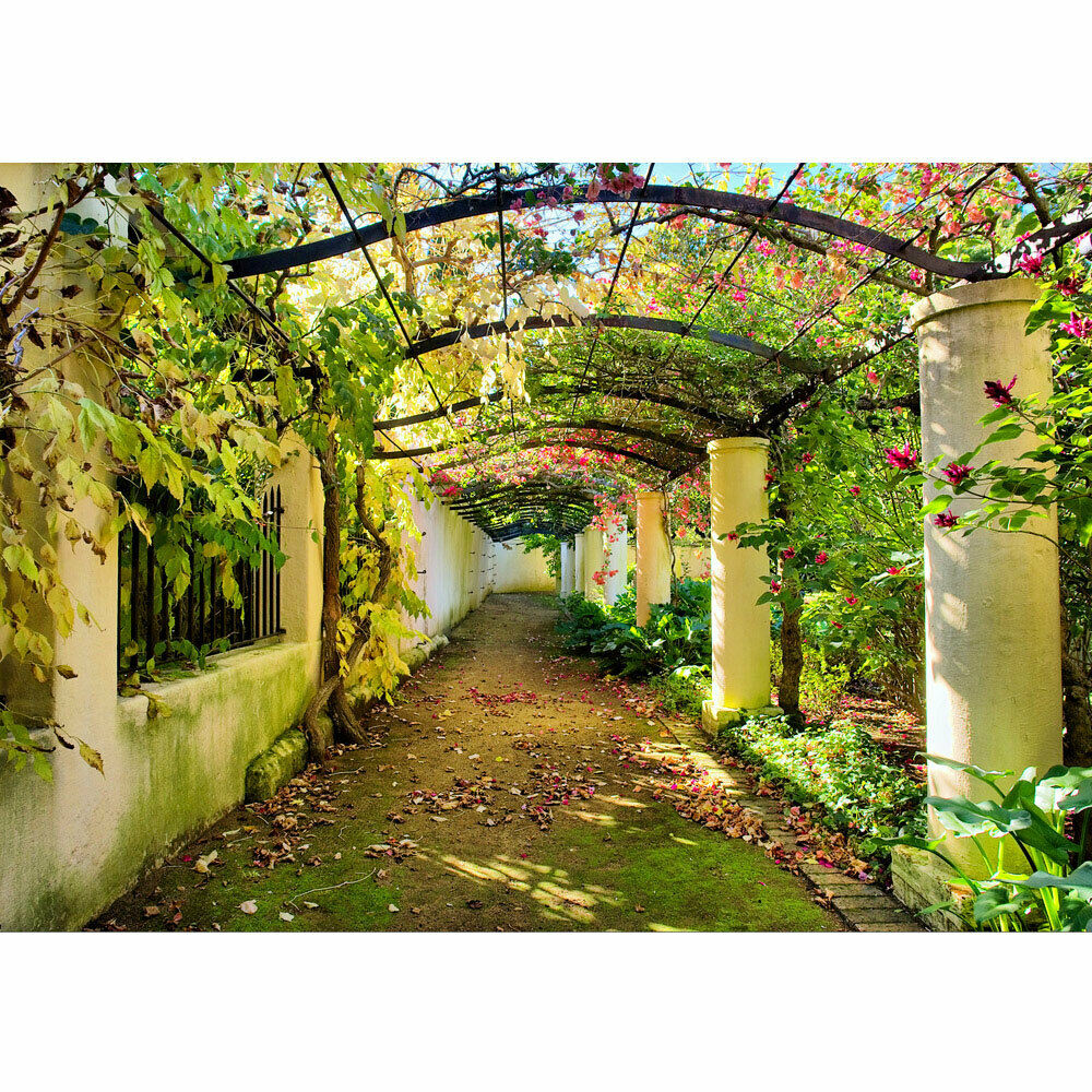 Fototapete Garten Terrasse Blaumenranken Blaume 3D Perspektive liwwing no. 47