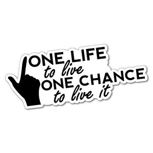 ONE-LIFE-ONE-CHANCE-LIVE-IT-Sticker-Decal-4x4-4WD-Funny-Ute-5763J