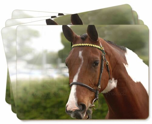 Beautiful Chestnut Horse Picture Placemats in Gift Box, AH8P