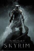 Elder Scrolls V: Skyrim Dragon Born 24x36 Video Game Poster Bethesda
