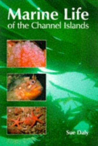 1 of 1 - New, The Marine Life of the Channel Islands, Daly, Sue, Book