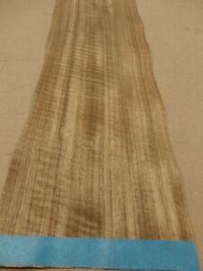 "Etimoe African Walnut wood veneer 7/"" x 13/"" raw no backing 1//42/"" thickness /""A/"""