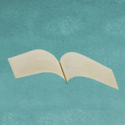 Il volo pindarico libri