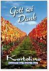 Gott sei Dank (2011, Taschenbuch)