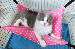 Hammock-Swing-Bed-for-Puppy-Cat-Kitten-Ferret-Bunny-Rabbit-Rat-Small-Animals