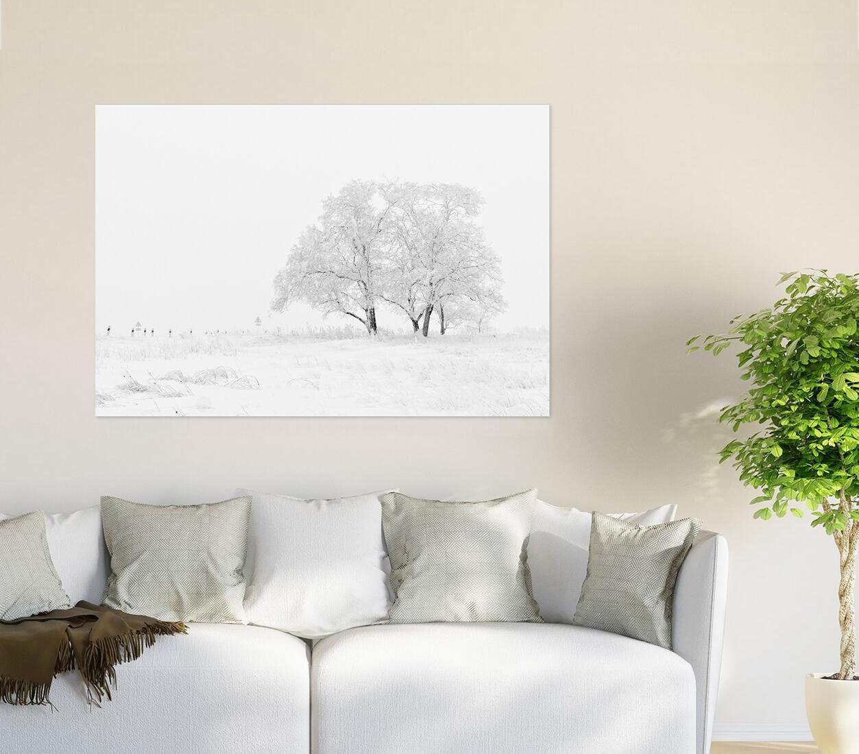 3D Strahlend Schnee Baum 8774 Fototapeten Wandbild BildTapete AJSTORE DE Lemon