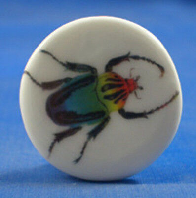 "1"" PORCELAIN CHINA BUTTON -- SCARAB BEETLE"