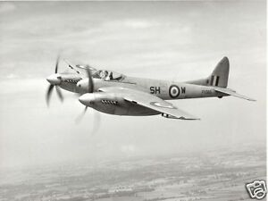 Giant 1//7 Scale British WW-II DeHavilland DH103 Hornet Plans and Templates 80ws