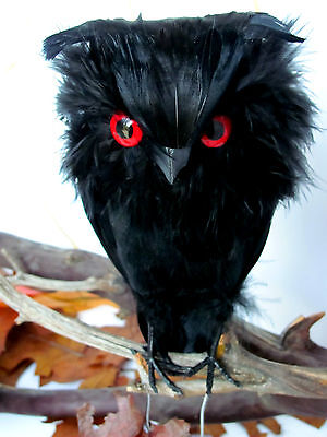 """6.5"""" High - Feather Owl- color in Black with Red Eyes"""