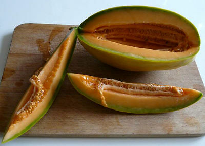 RARE BANANA CANTALOPE! 12 SEEDS! COMBINED S/H! SEE MY STORE FOR RARE SEEDS!