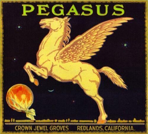 Redlands Pegasus Winged Horse Orange Citrus Fruit Crate Label Art Print