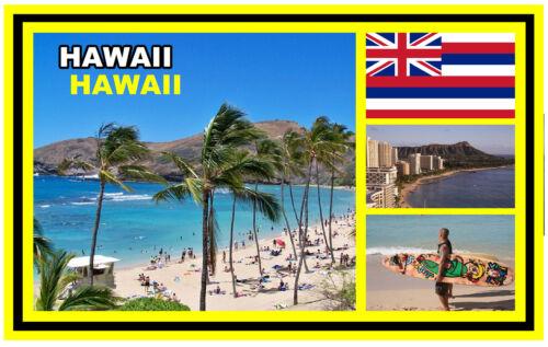 Cadeau Hawaii Tout Nouveau Souvenir Nouveauté Aimant de Réfrigérateur