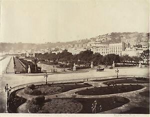 Italia-Napoli-Amodio-Vintage-Albumina-Ca-1875