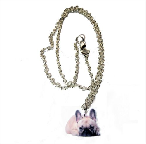 Französisch French Bulldog  Halskette necklace