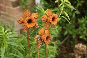 Decorative Garden Rusted Stake 50cm Set of Three Small Metal Bluebell Flowers