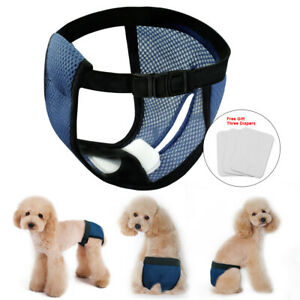 Mesh-Female-Dog-Puppy-Diaper-Physiological-Pants-Sanitary-Shorts-Underwear-S-M-L