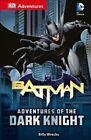 DK Adventures: DC Comics: Batman: Adventures of the Dark Knight by Billy Wrecks (Paperback / softback, 2016)