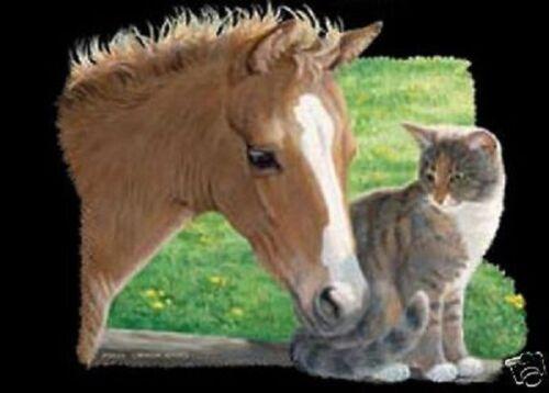 Horse Cat HEAT PRESS TRANSFER for T Shirt Sweatshirt Tote Fabric Foal Kitten 534