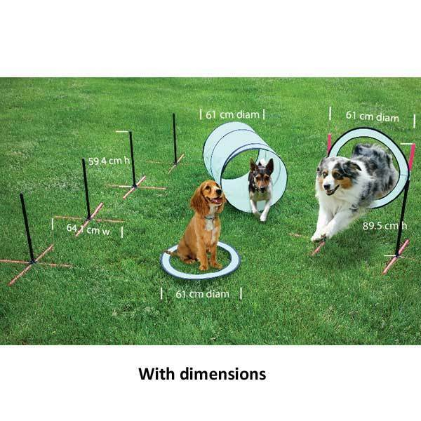 Agility Training High Jump Ring Tunnel Weave Poles Outdoor Dog Puppy Activity