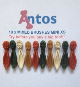 Antos-Cerea-XS-Mini-Tooth-Brushes-x-10-039-TRY-BEFORE-YOU-BUY-A-BIG-TUB-039-Dog-Chews