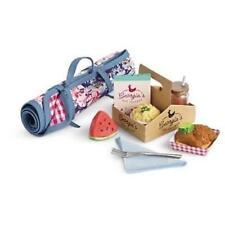 American Girl Tenney Grant Picnic Set Accessories Blanket Tea 10pc NRFB