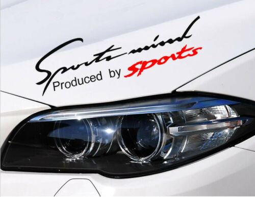 "Sports Mind Black Car Headlight Taillight Eyebrow Decal Sticker Vinyl 14/"" X 4.5/"""