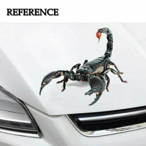 3D Scorpion Car Truck Vehicle Tailgate Hood Window Vinyl Realistic Decal