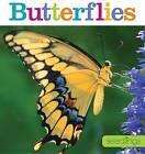 Seedlings: Butterflies by Aaron Frisch (Paperback / softback, 2015)