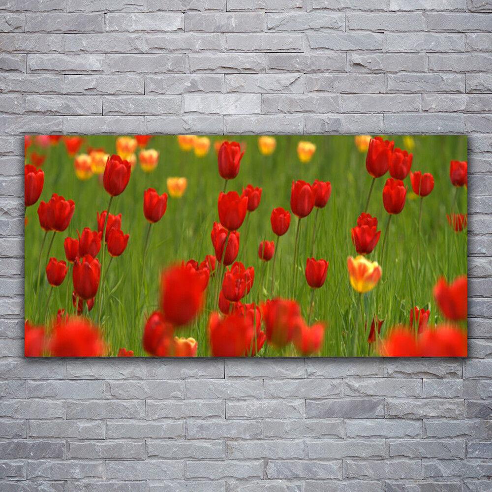 Peintures Murales Photos de pression sur verre 120x60 Tulipes Nature
