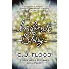 Infinite Sky by C. J. Flood (Paperback, 2014)