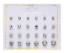 A-Set-Of-12-Pairs-Different-Style-Ear-Studs-Earrings-Allergy-Free-Wholesale-UK thumbnail 4