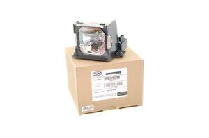 Alda-PQ-Reference-Lampe-pour-Eiki-LC-X71-Projecteurs-de-Projecteur-avec-Logement