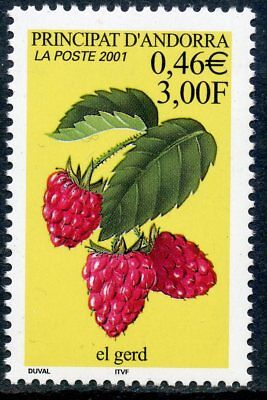 Stamps United Stamp //// Timbre Andorre Neuf N° 547 ** Flore Fruit Elegant In Smell Stamps