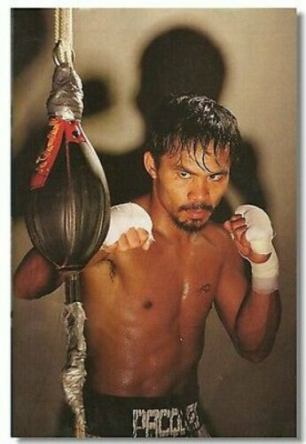 Poster Manny Pacquiao Pac Man The Destroyer Room Wall Cloth Print 507
