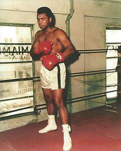 8x10 Color Photo Muhammad Ali