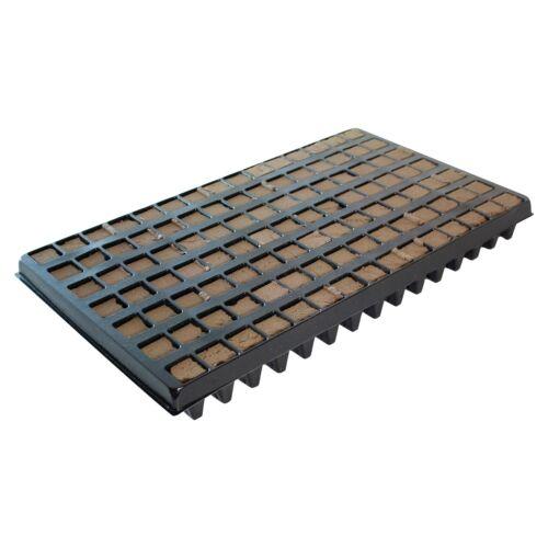 28 x hortis plantation de coffre 104 stopée growing Grow stecklings-Medium tray pinpot