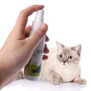 Cat-Catnip-Pet-Training-Toy-Natural-Healthy-Cat-Mint-Funny-Scratch-Spray-50ML