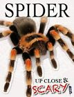 Up Close & Scary Spider by Louise & Richard Spilsbury (Paperback, 2016)