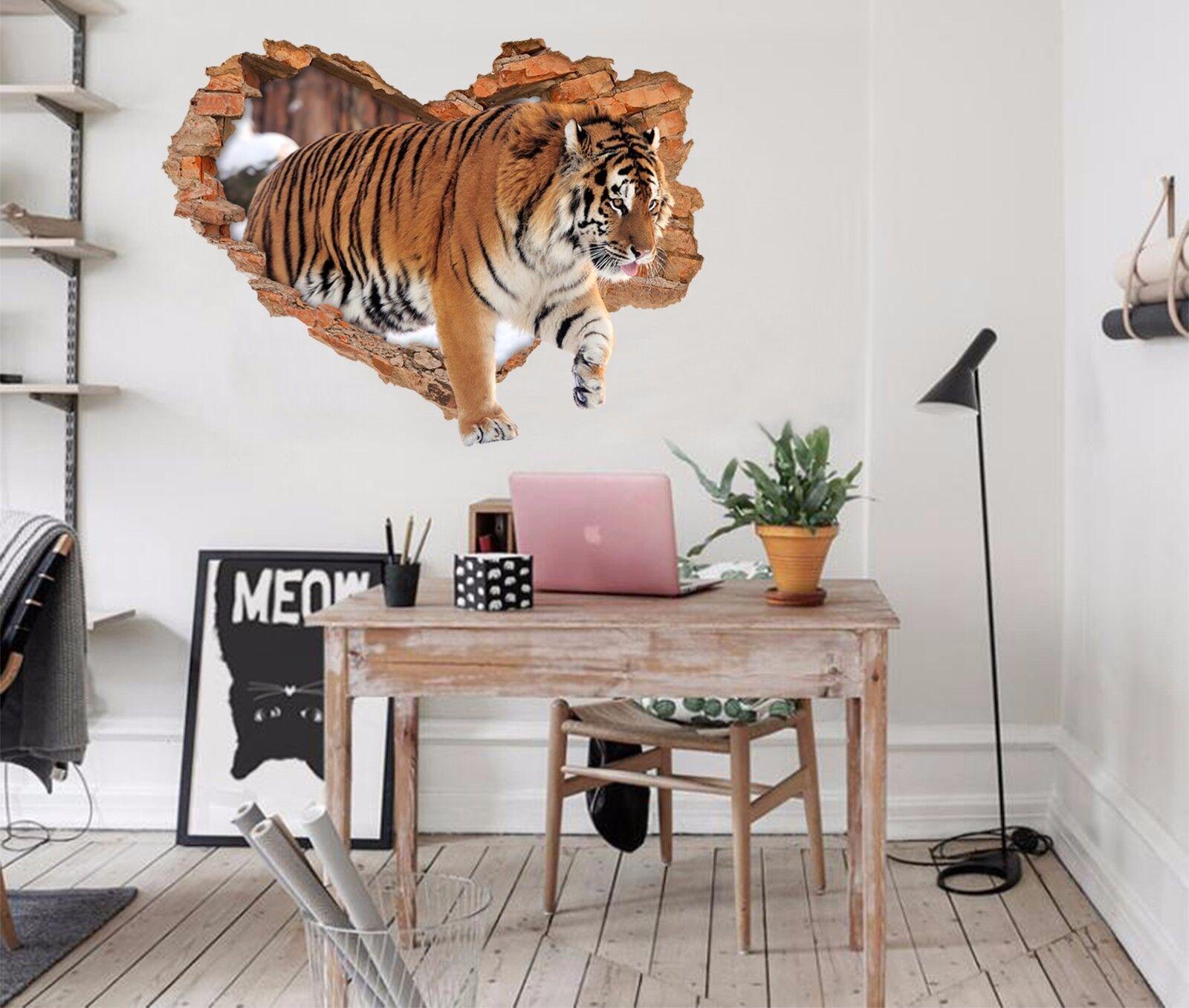 3D Tiger Mauer 723 Mauer Murals Mauer Aufklebe Decal Durchbruch AJ WALL DE Kyra