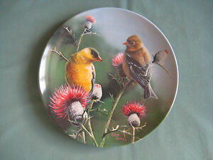 Collectors-plate-The-Goldfinch-8-Kevin-Daniel-Bradford-Exchange-Edwin-M-Knowles