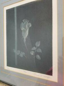 Sale products Vintage Framed Limited Edition Print Rose