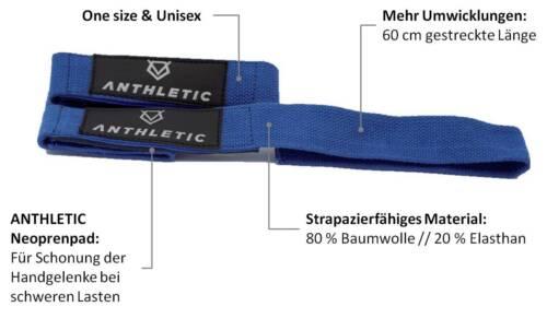 Bodybuilding, gepolstert Fitness Ein Paar //// blau ANTHLETIC Zughilfen