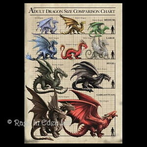 Age of dragons anne stokes adult dragon size comparison greeting image is loading age of dragons anne stokes adult dragon size m4hsunfo