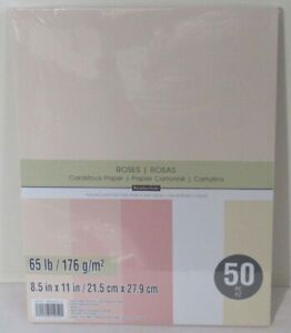 Earth Colors 8 1//2 x 11 by Recollections Recollections Cardstock Paper