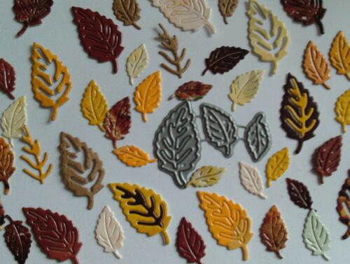 Tattered Lace Conjunto de 3 Mini pequeñas hojas otoño hoja trío follaje de corte muere