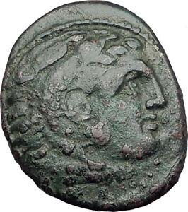 KASSANDER-killer-of-Alexander-the-Great-039-s-FAMILY-Ancient-Greek-Coin-Horse-i64935